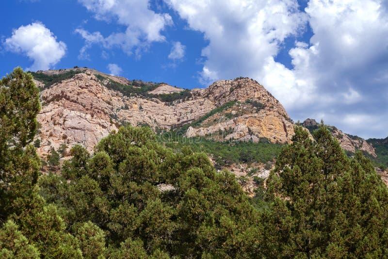 Una coppia sposata che si siede su una scogliera nelle montagne Mani dei giovani contro lo sfondo di un landscapeMountain della m fotografia stock