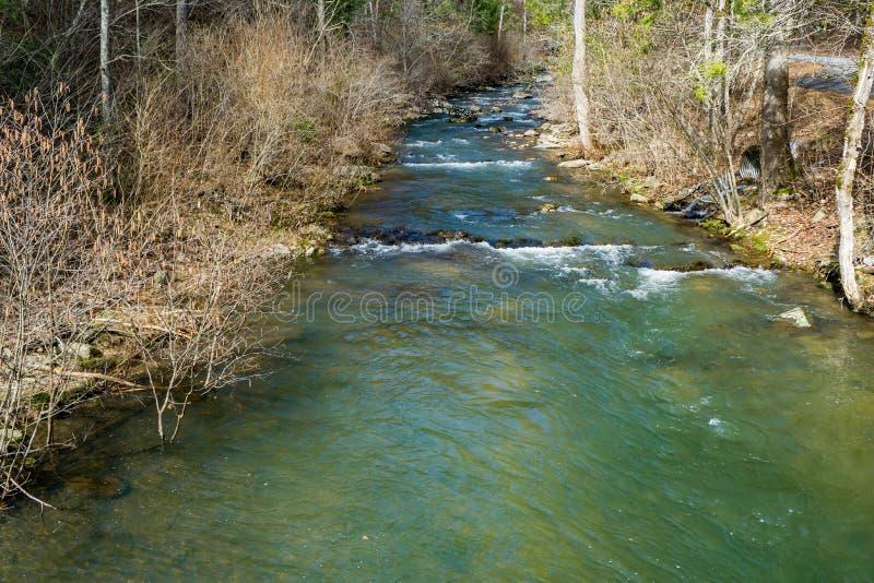 Una corrente tranquilla del salmerino alpino in Ridge Mountains blu fotografie stock libere da diritti