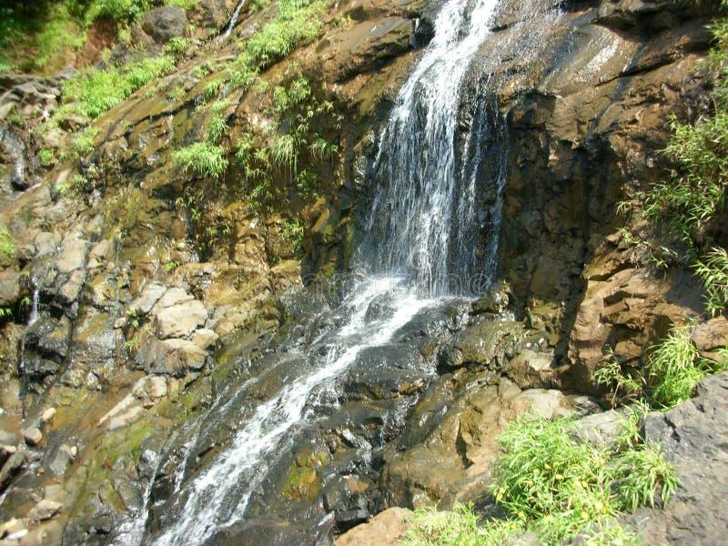 Una corriente clara del agua en rocas durante la estación de lluvias fotografía de archivo libre de regalías