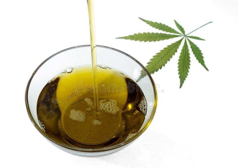 Una corriente del aceite del cañamón que fluye en un bol de vidrio redondo y la marijuana hojean Aislado en el fondo blanco imagenes de archivo