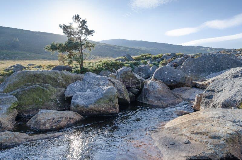 Una corriente en las montañas irlandesas foto de archivo