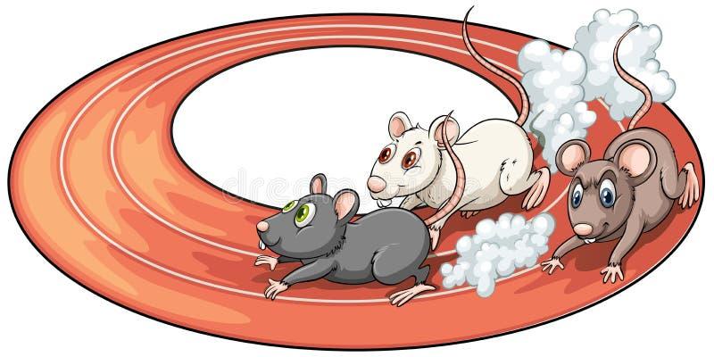 Una corsa di tre ratti illustrazione vettoriale