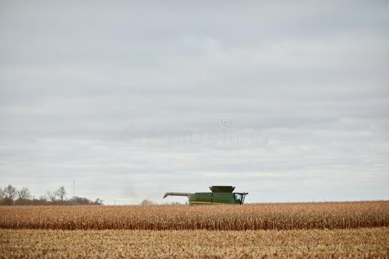 Una cosecha del trigo, un rastrojo y una máquina segadora secos imagenes de archivo