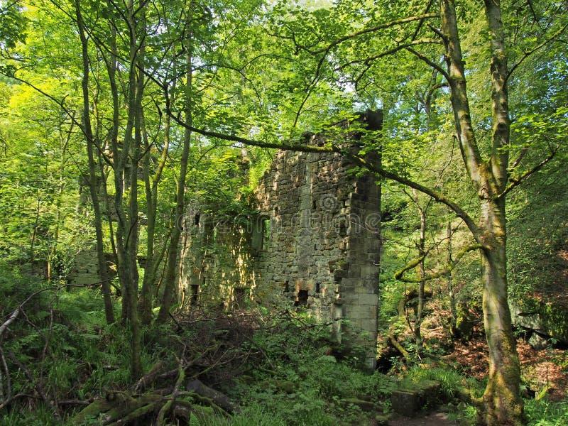 Una costruzione di pietra antica rovinata circondata dagli alberi forestali verdi alla luce solare luminosa originalmente ha chia fotografia stock libera da diritti