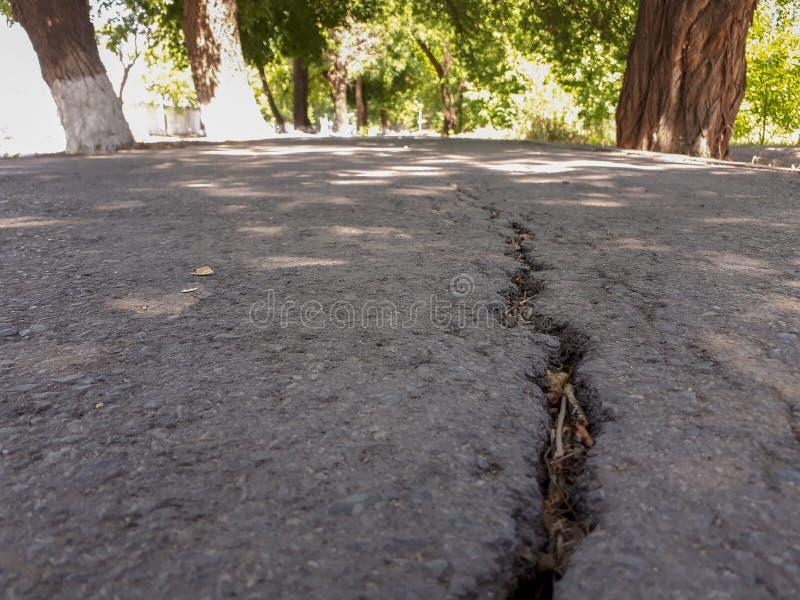 Una crepa nella pavimentazione fotografie stock libere da diritti