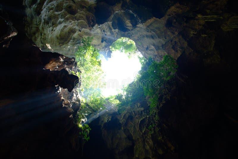 Una cueva en un bosque con luz del sol fotografía de archivo libre de regalías