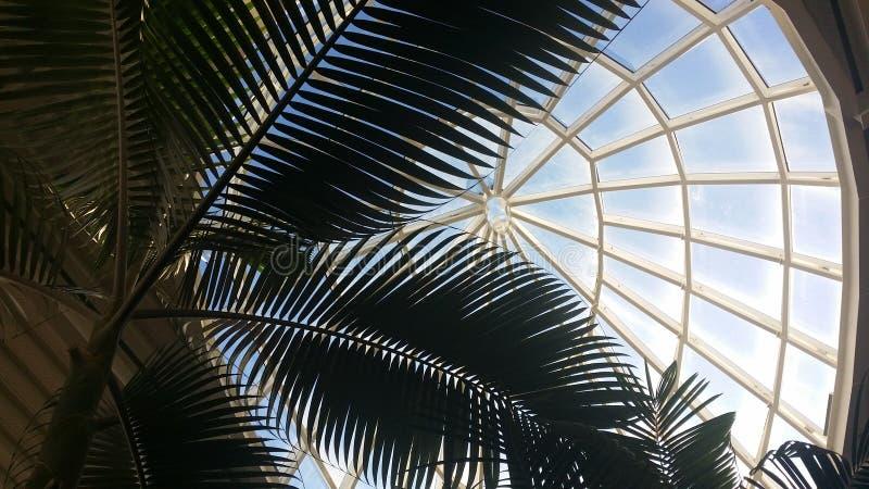 Una cupola della serra fotografie stock
