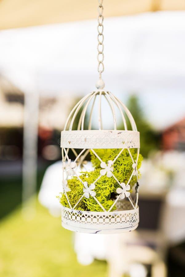 Una decoración blanca de la jaula con los liquenes verdes claros imagen de archivo