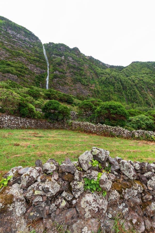 Una di molte cascate sull'isola del Flores immagine stock