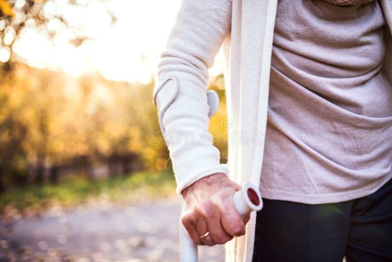 Una donna anziana con una gruccia su una passeggiata in natura di autunno fotografia stock libera da diritti