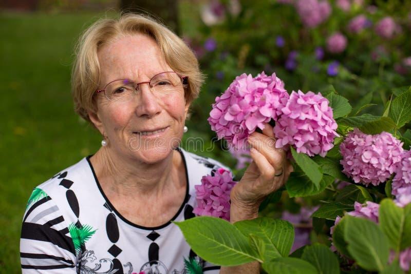 Una donna anziana piacevole sta posando davanti ai bei fiori rosa fotografie stock