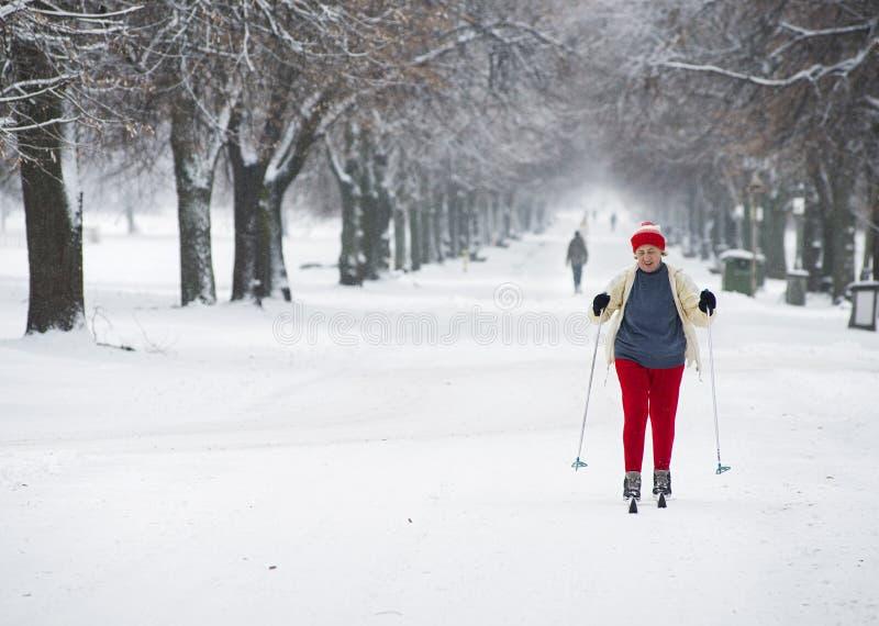 Una donna anziana va sull'sci che attraversano il pæse immagini stock libere da diritti
