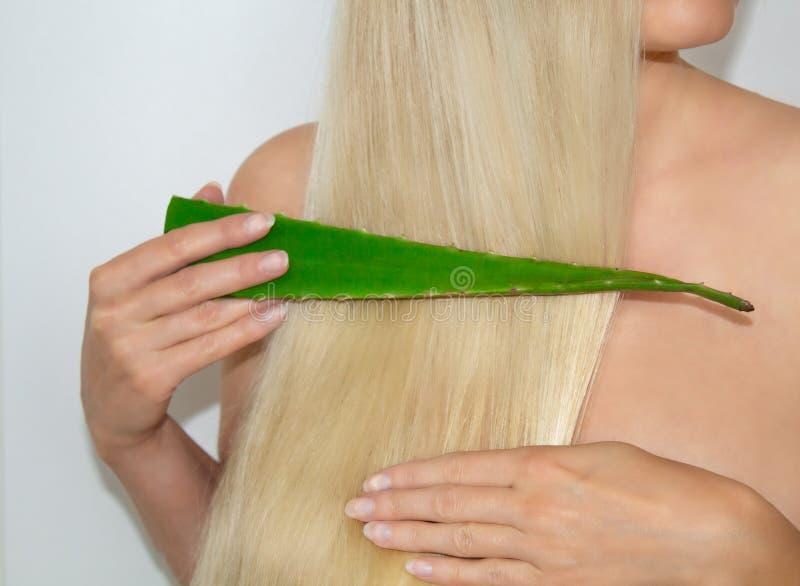 Una donna bionda si è applicata l'aloe vera ai suoi capelli Cosmetici naturali per capelli fotografie stock