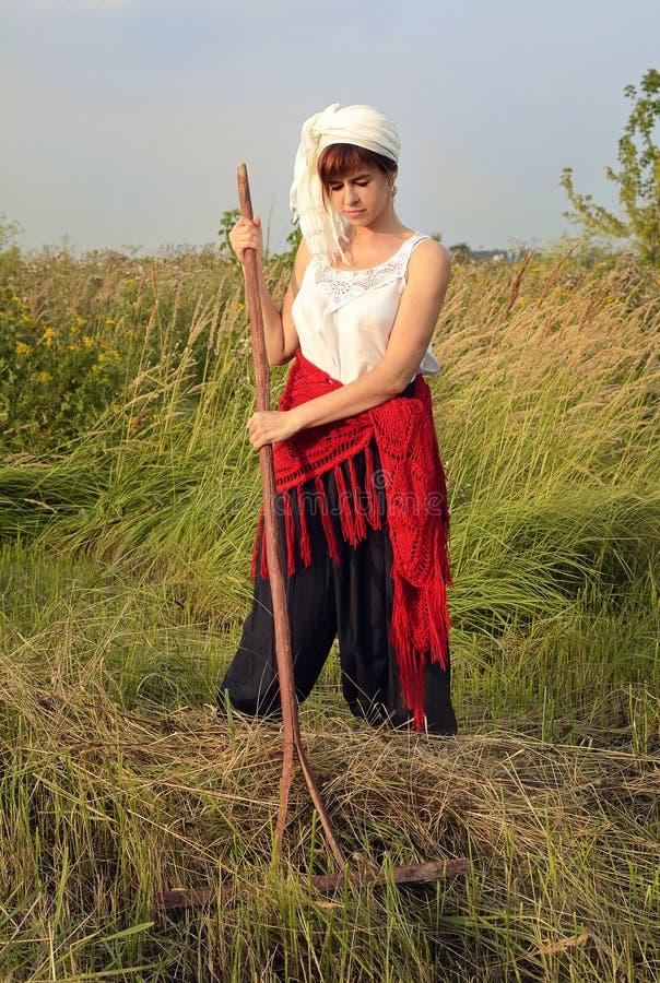Una donna con una camicetta di pizzi bianchi e uno scialle rosso rastrella l'erba secca sul campo una sera d'estate fotografie stock