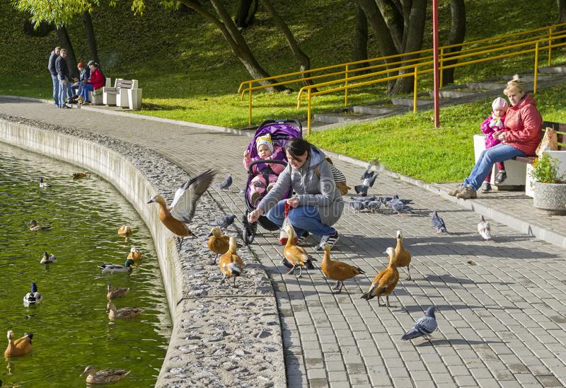 Una donna con un bambino alimenta le anatre sullo stagno della banchina immagini stock