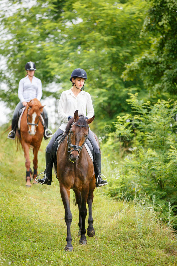 Una donna di due cavalieri sui cavalli che vanno giù dalla collina fotografia stock libera da diritti