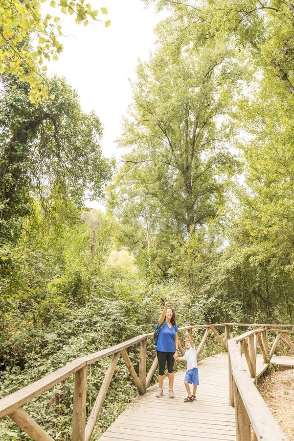 Una donna e un bambino fanno escursionismo, camminando su una passerella di legno immagine stock libera da diritti