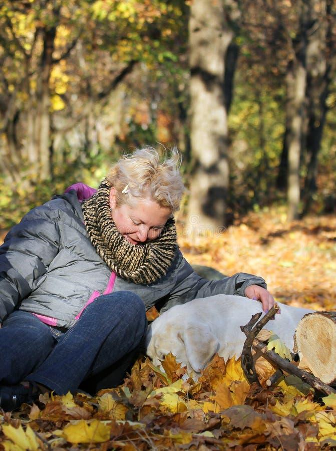 Una donna felice con Labradors giallo in Autumn Park In il giorno soleggiato fotografia stock libera da diritti