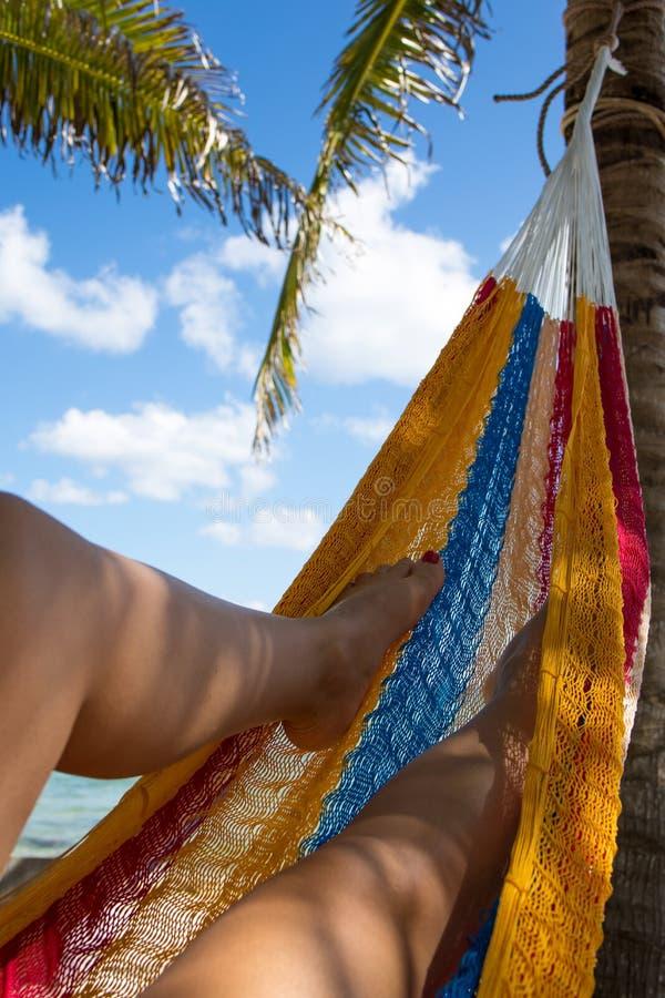 Una donna si rilassa in un'amaca su una spiaggia caraibica immagini stock libere da diritti
