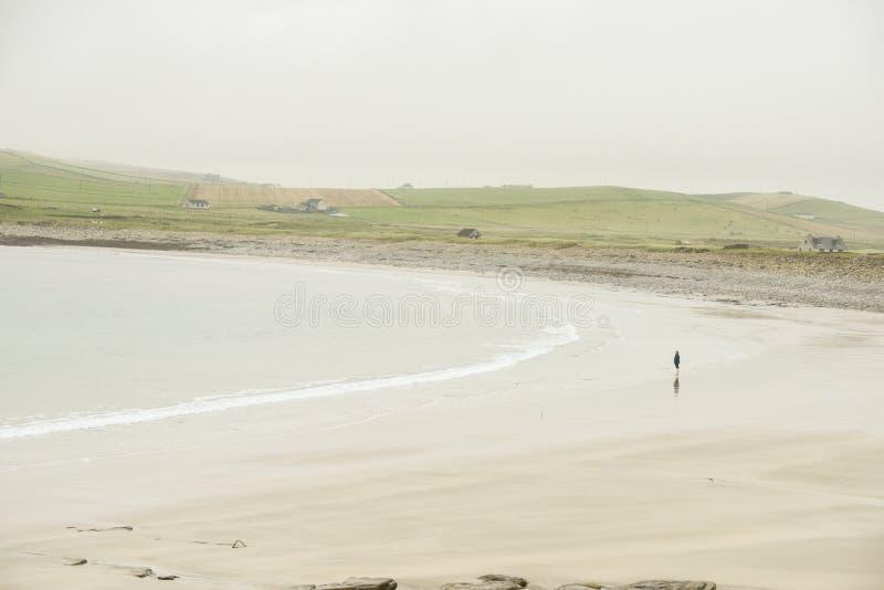 Una donna sola su una spiaggia isolata in Scozia immagine stock libera da diritti