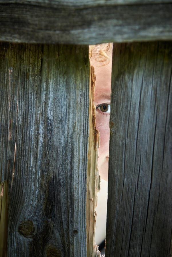 Una donna spia attraverso la crepa dei vicini di un recinto fotografia stock libera da diritti
