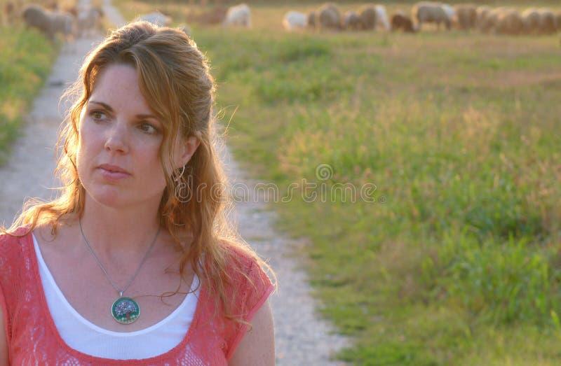 Una donna in un campo delle pecore immagini stock libere da diritti
