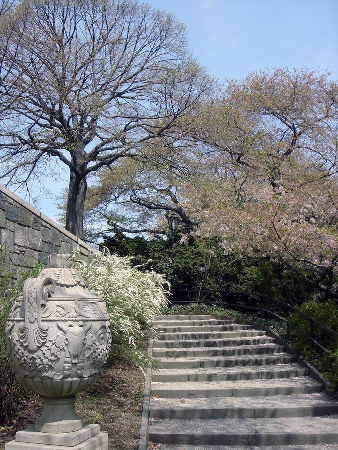 Una escalera, y Sakura en el Central Park fotografía de archivo