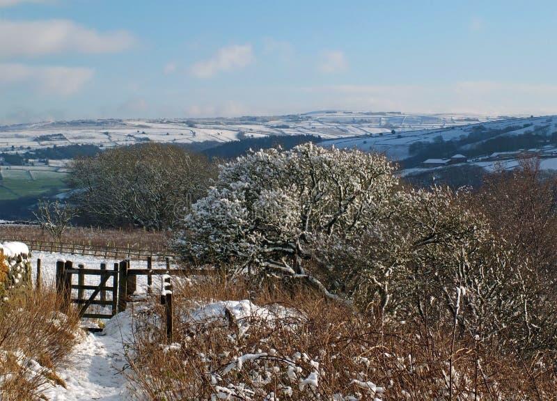 Una escena panor?mica del invierno con las colinas y los ?rboles nevados del penino con una trayectoria y una puerta que llevan a fotografía de archivo