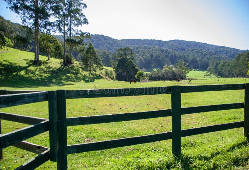 Una escena pintoresca de la granja de Gipplsland Australia foto de archivo