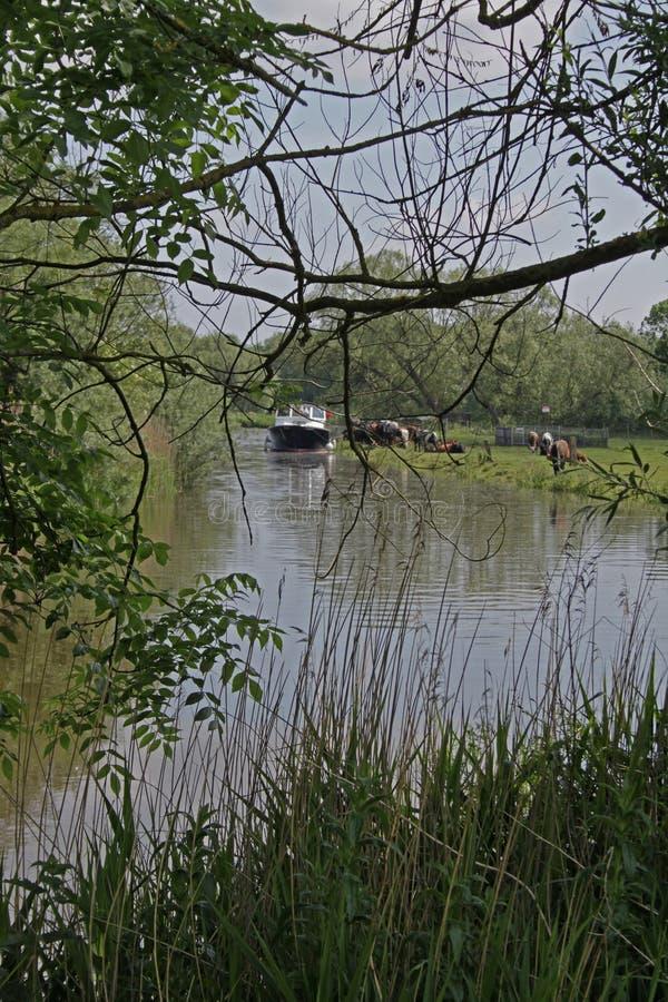 Una escena tranquila en los broads de Norfolk foto de archivo libre de regalías