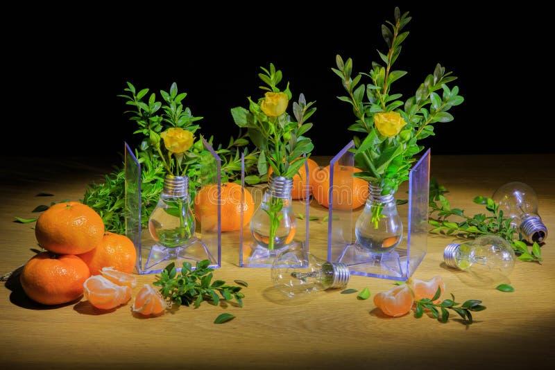 Una exposición hermosa de flores y de bulbos foto de archivo libre de regalías