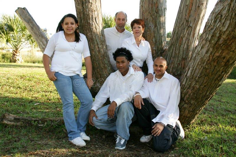 Una famiglia di cinque adottata fotografia stock libera da diritti