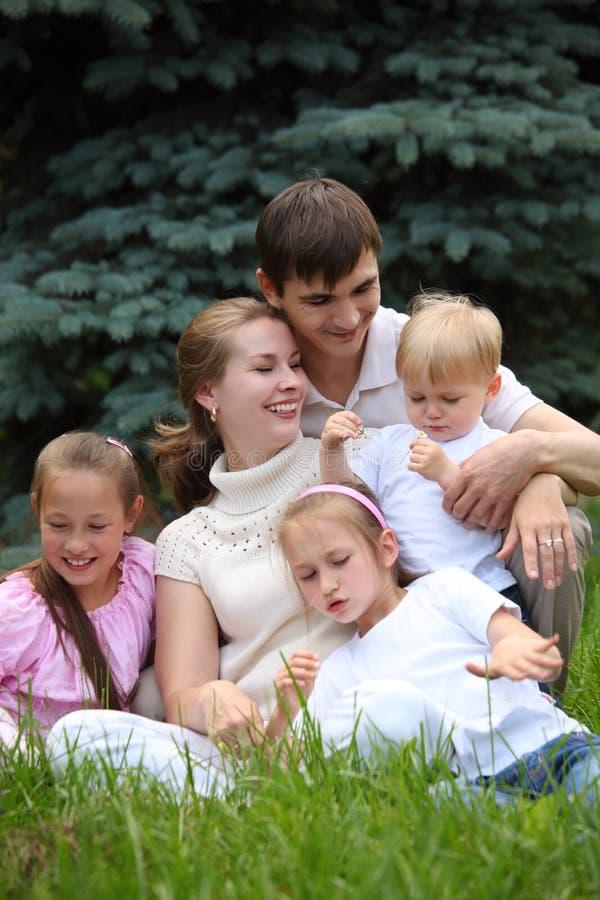 Una famiglia di cinque esterni in estate fotografia stock