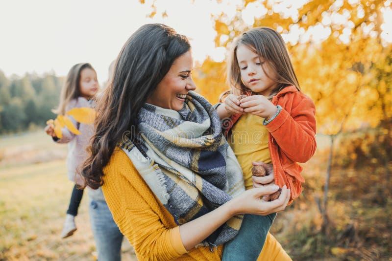 Una familia joven con dos pequeños niños en naturaleza del otoño imagen de archivo