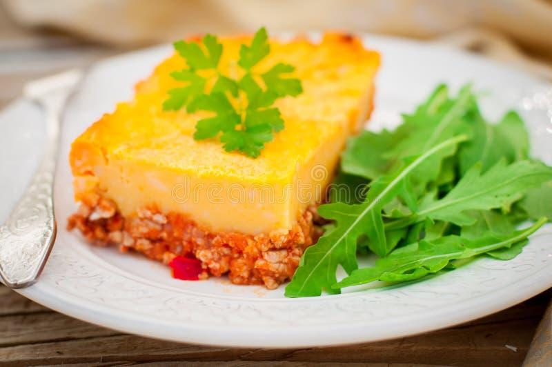 Una fetta di carne tritata della patata, della zucca e del pomodoro cuoce immagini stock libere da diritti