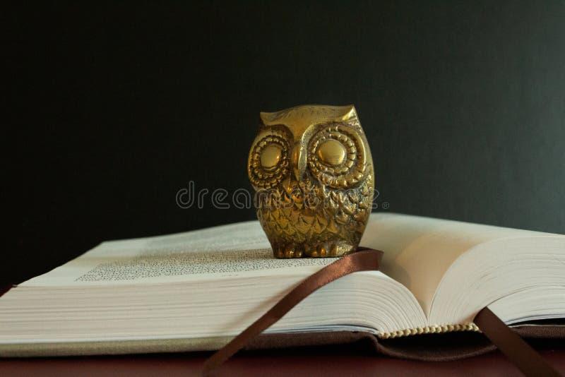 Una figura dorata di un gufo sopra un libro aperto fotografia stock