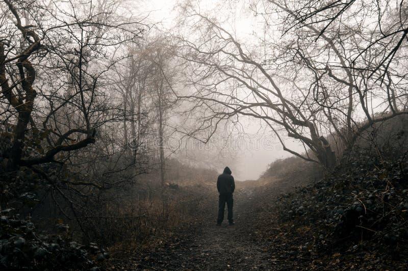 Una figura incappucciata condizione in una foresta spettrale un giorno di inverni nebbioso Con uno smorzato granulare pubblichi fotografia stock libera da diritti