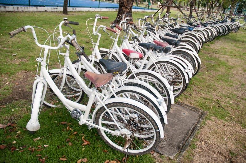 Una fila de bicis de alquiler fotos de archivo