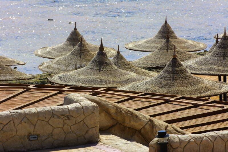 Una fila degli ombrelli della paglia da proteggere dal surriscaldamento e dai lettini su una spiaggia sabbiosa da un cielo blu e  fotografia stock