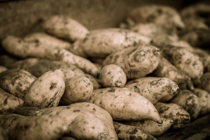 Una fine del deposito della patata dolce dell'igname sul jogja contenuto foto Indonesia fotografia stock