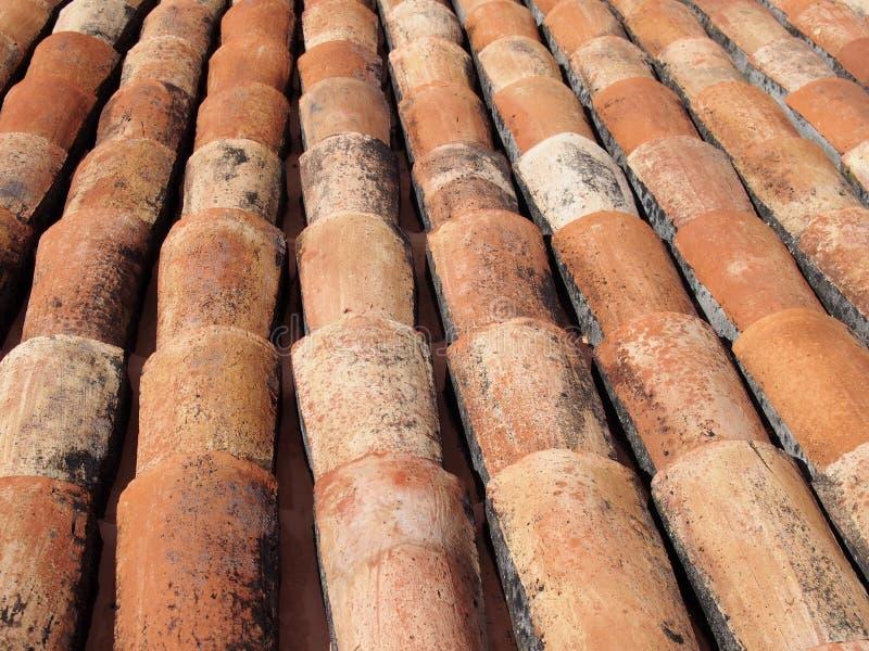 Una fine su di vecchi tegol fiamminga arancio curvi di terracotta su un tetto fotografia stock