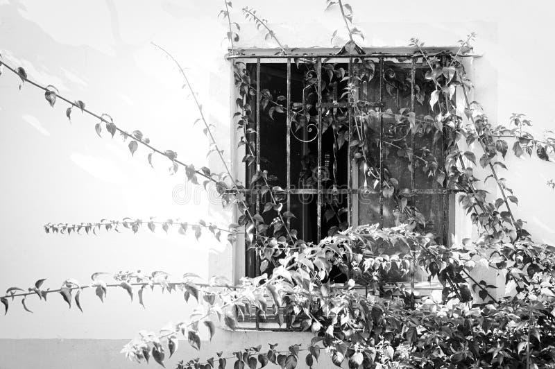 Una finestra abbandonata illustrazione vettoriale