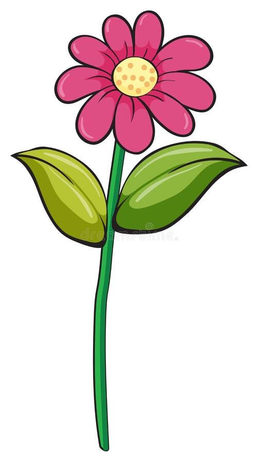 Una flor ilustración del vector