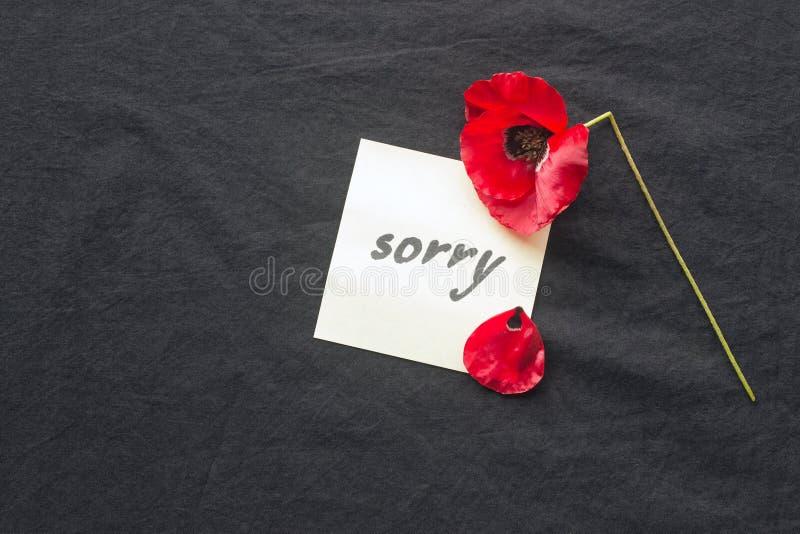 Una flor roja de la amapola rota en fondo oscuro Nota de la disculpa imágenes de archivo libres de regalías