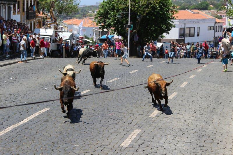 Una folla considera bullrunning immagine stock libera da diritti