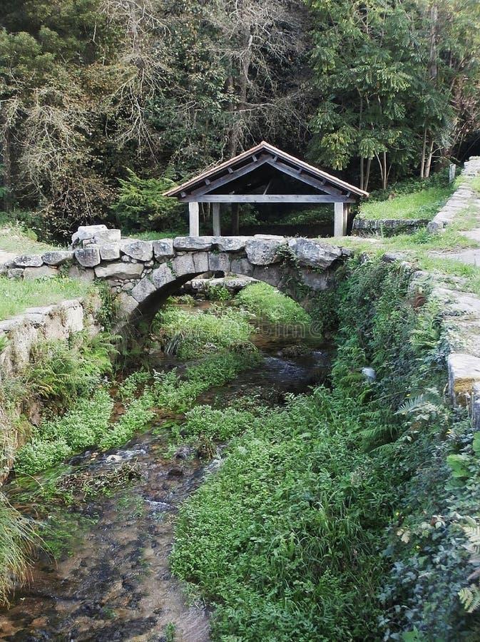 Una foresta incantata in Galizia Spagna di nord-ovest fotografie stock libere da diritti