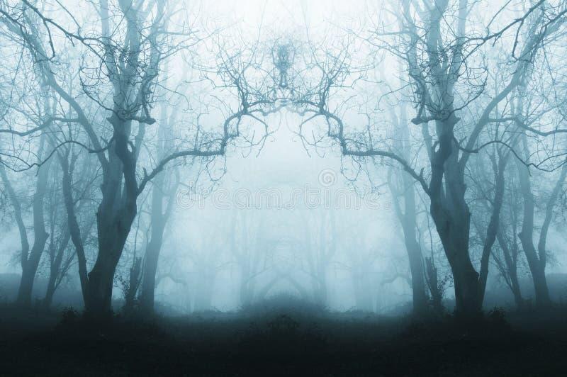 Una foresta spettrale e sinistra nell'inverno, con gli alberi profilati da nebbia Con uno smorzato, rispecchiato, il blu pubblica immagini stock