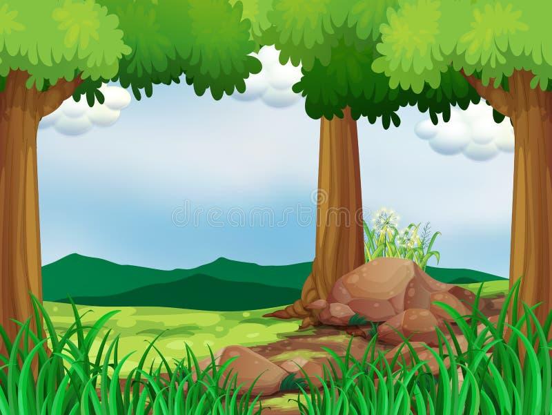 Una foresta verde con le rocce illustrazione vettoriale
