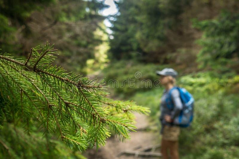 Una foto de una muchacha feliz que camina a lo largo de un rastro de montaña imagen de archivo libre de regalías