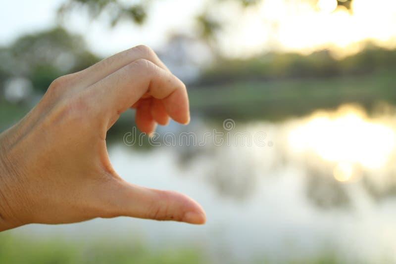 Una foto della sfuocatura di una metà di manifestazione della mano di cuore immagine stock